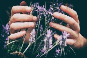 Joy of Healing Plants